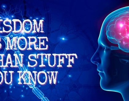 Wisdom is more than stuff you know