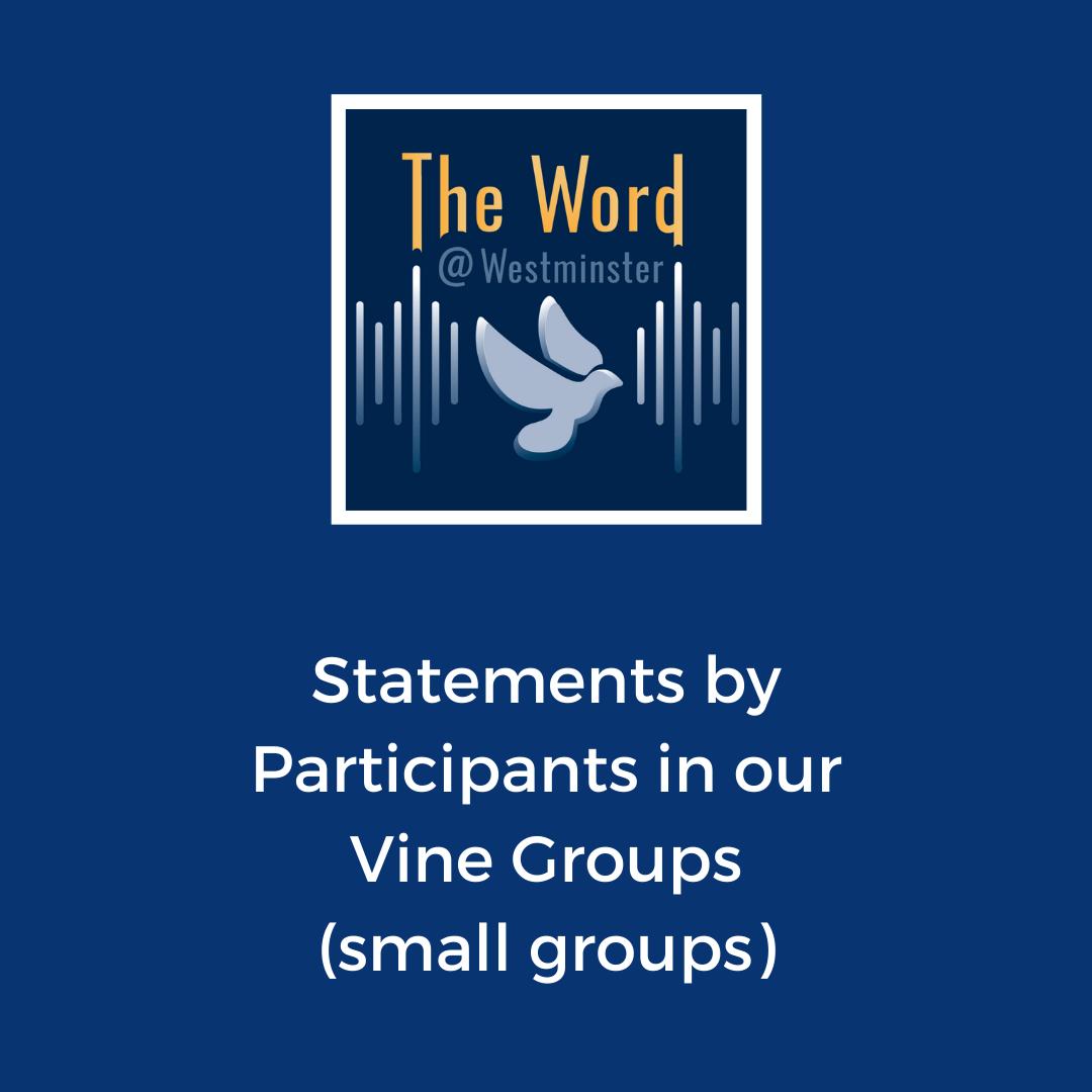 Vine Groups - Participant Statements